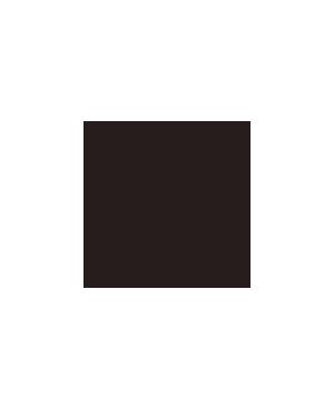 coaster_icon