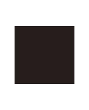 tshirt_icon